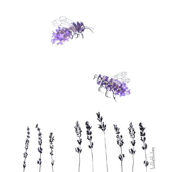 Lavendelbiene
