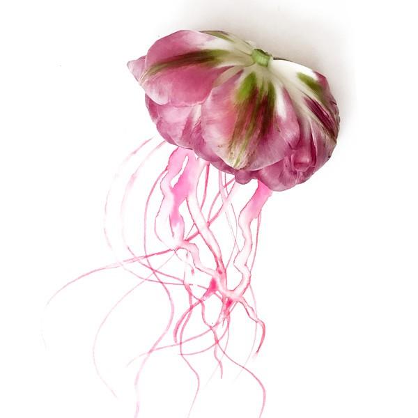 Tulpen-Medusa