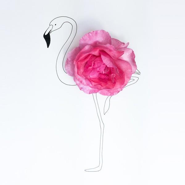 Rosen-Flamingo